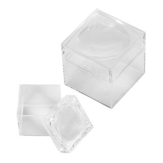 WP6387006 - Magnifier box